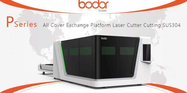 P Series Laser Cutting Machine Cutting 5.5mm SS - BODOR® Laser Cutting Show